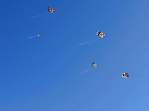 凧あげ祭り