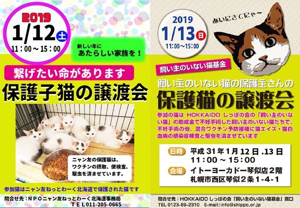 2019_12-13_R.jpg