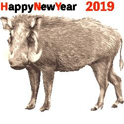 20190102.jpg