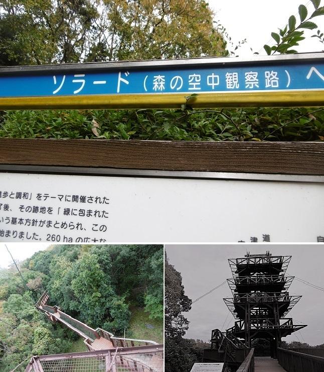 万博公園3
