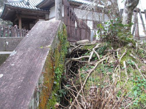 IMG_9080松尾の丸階段穴