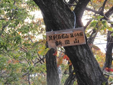 181125三足富士~大小山~山川浅間山 (8)s