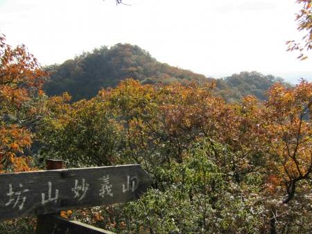 181125三足富士~大小山~山川浅間山 (21)s