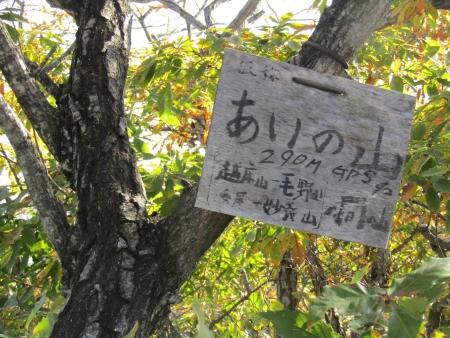 181125三足富士~大小山~山川浅間山 (25)s