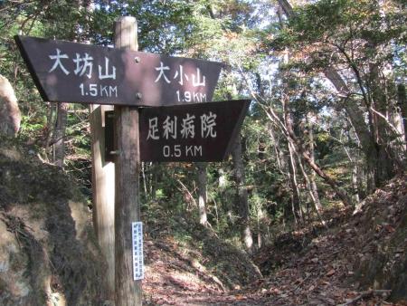 181125三足富士~大小山~山川浅間山 (26)s