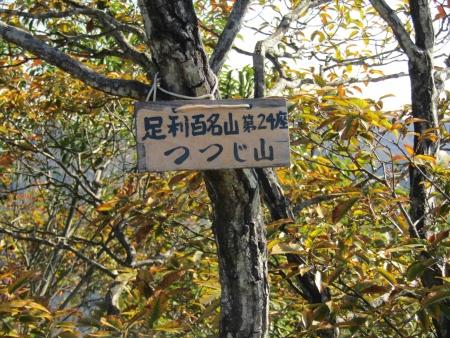 181125三足富士~大小山~山川浅間山 (27)s