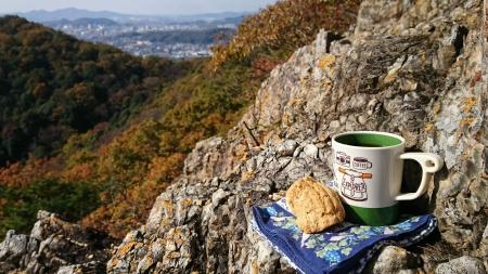 181125三足富士~大小山~山川浅間山 (33)s