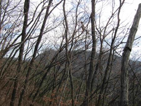181222赤雪山~仙人ヶ岳 (9)赤雪山s