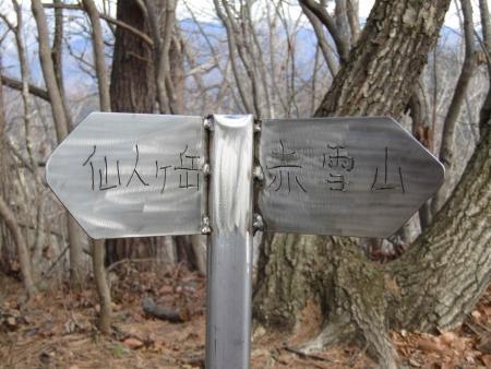 181222赤雪山~仙人ヶ岳 (11)s