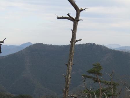 181222赤雪山~仙人ヶ岳 (20)赤雪山s