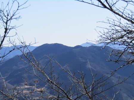 190119桜山 (5)s