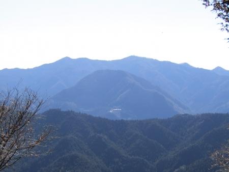 190119桜山 (13)s