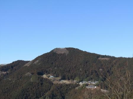 190119桜山 (16)s