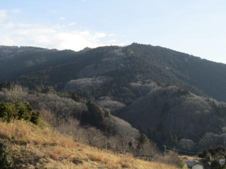 190120日向山~丸山~ツツジ山 (4)s