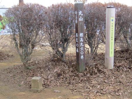 190120日向山~丸山~ツツジ山 (13)s