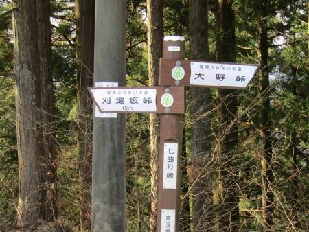 190120日向山~丸山~ツツジ山 (25)s