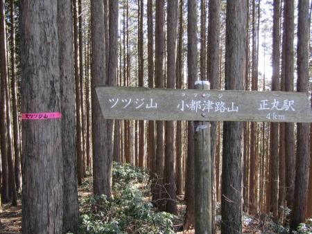 190120日向山~丸山~ツツジ山 (32)s