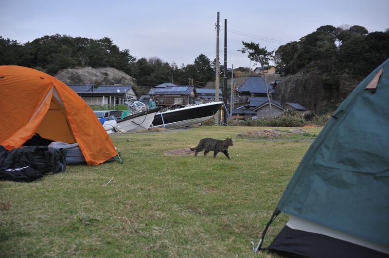 亀島193_011