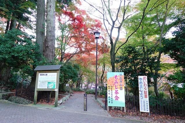 20181118 瑞宝寺公園 紅葉 (16)