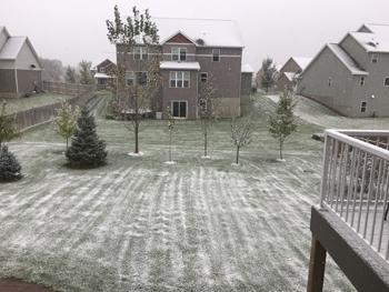 snow10141802.jpg
