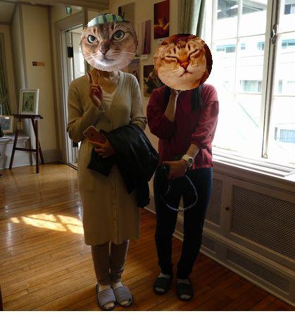 猫写真展②