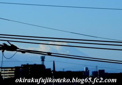 1224朝富士