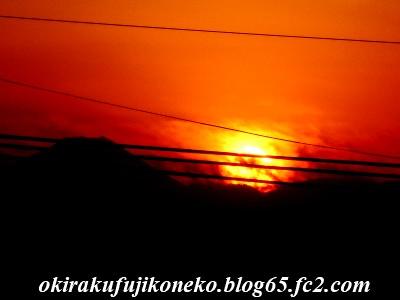 1225夕陽2