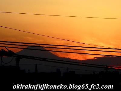 1225夕陽3