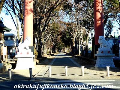 氷川神社狛犬