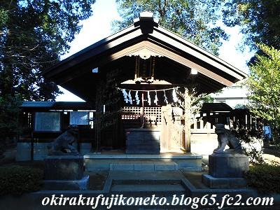 1230氷川神社2