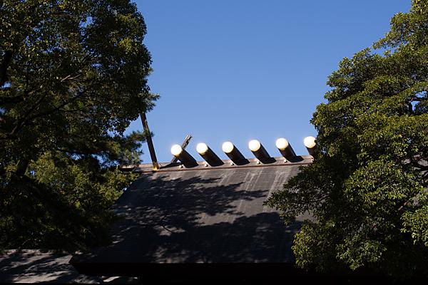 熱田神宮拝殿屋根の鰹木と千木