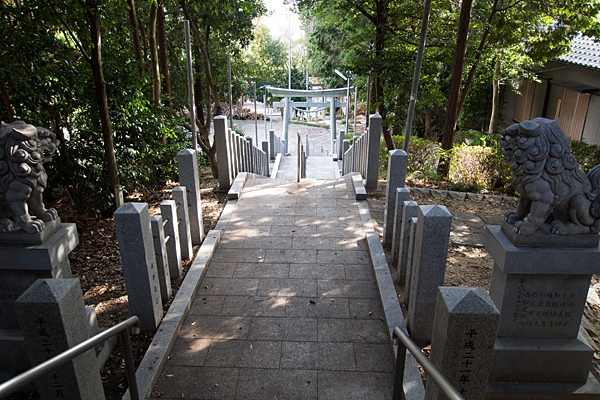 籠山神社見下ろす
