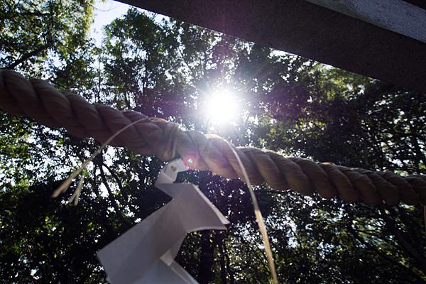 注連縄と太陽