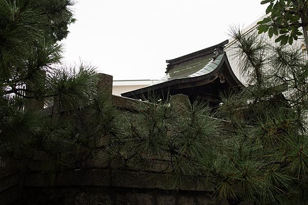千年1八幡神社本社横から