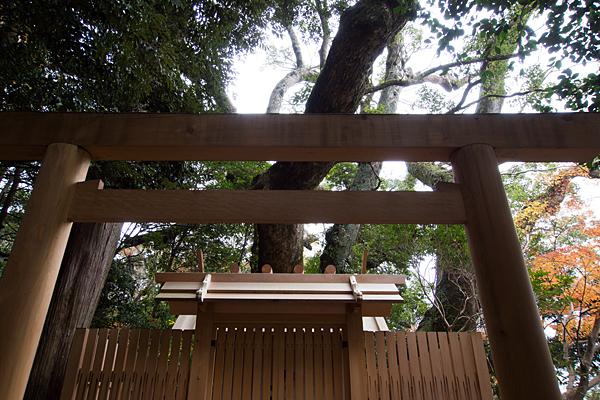 大水神社鳥居と木々