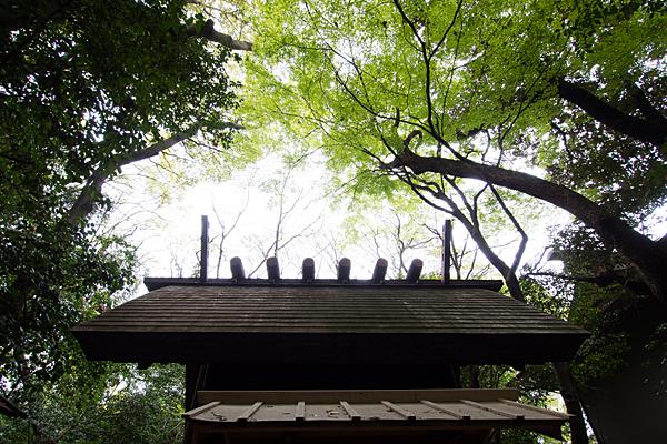 熱田神宮大幸田神社?