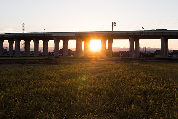 道行き高速道路高架と夕日