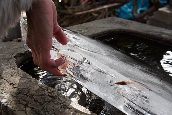 専念寺手水の氷