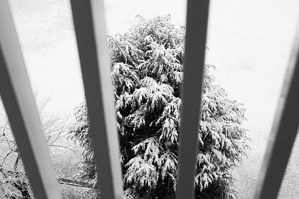 モノクロ雪