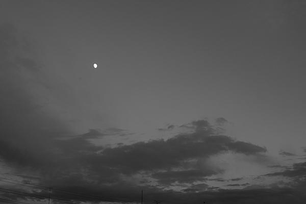 モノクロ夕方の月