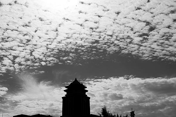モノクロ名古屋市庁とうろこ雲