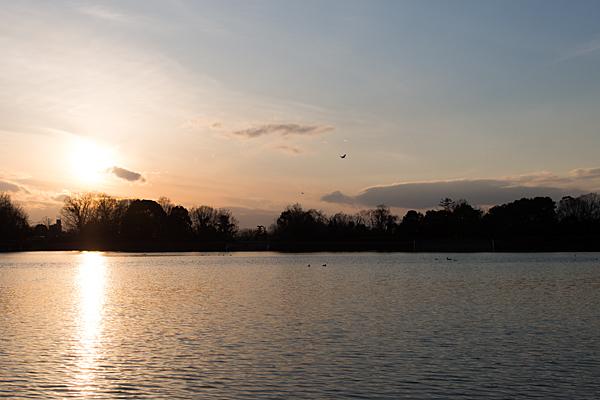 緑ヶ池夕景