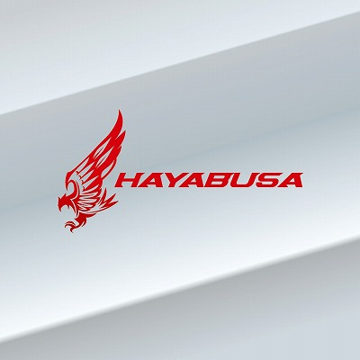HAYABUSA_A.jpg