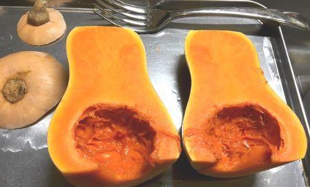 バターナッツ-2