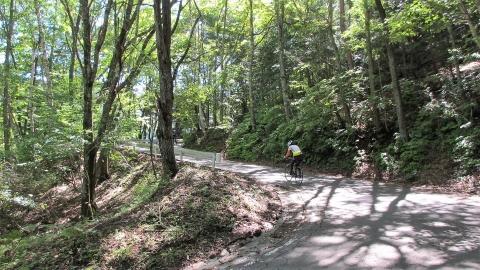 分杭峠までの道、結構傾斜もキツいところがあり、ヘロヘロ