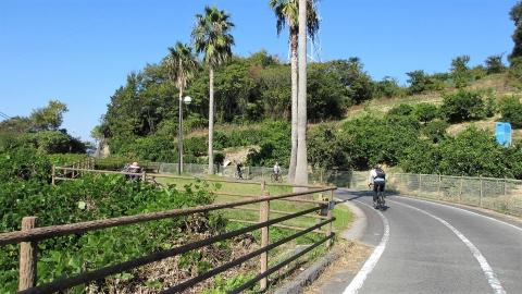 因島から生口橋を登ります。
