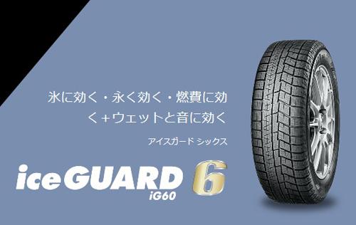 ice guard 6