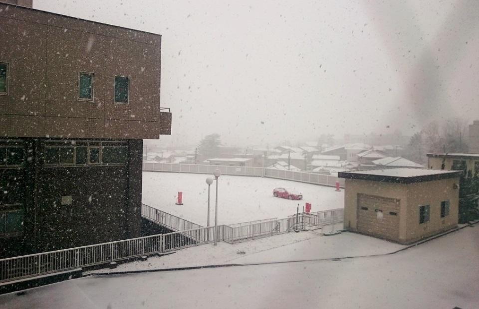 181208初積雪