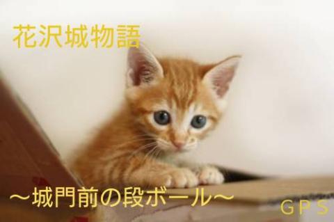 『花沢城物語~城門前の段ボール~』 byGPS