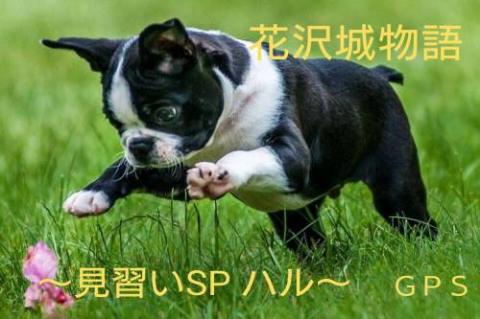 『花沢城物語~見習いSP ハル~』 byGPS